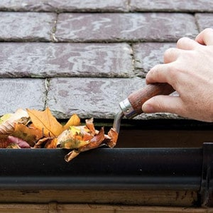 Person cleaning out their gutters in fall in columbus Ohio